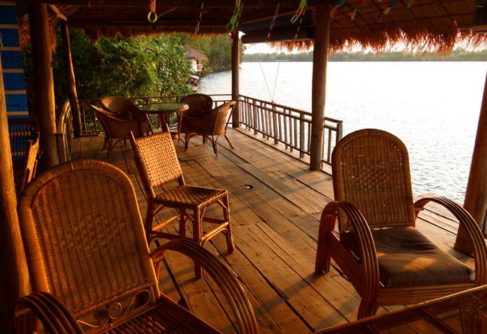 Kampot Manguier