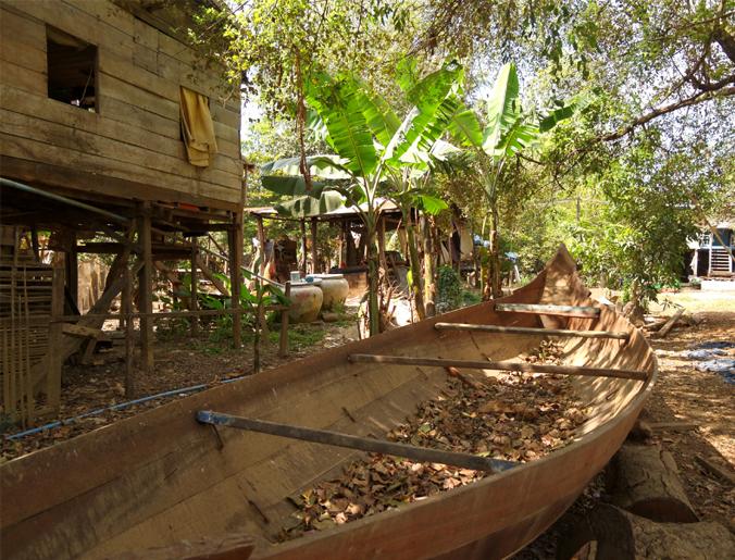 battambang-barque