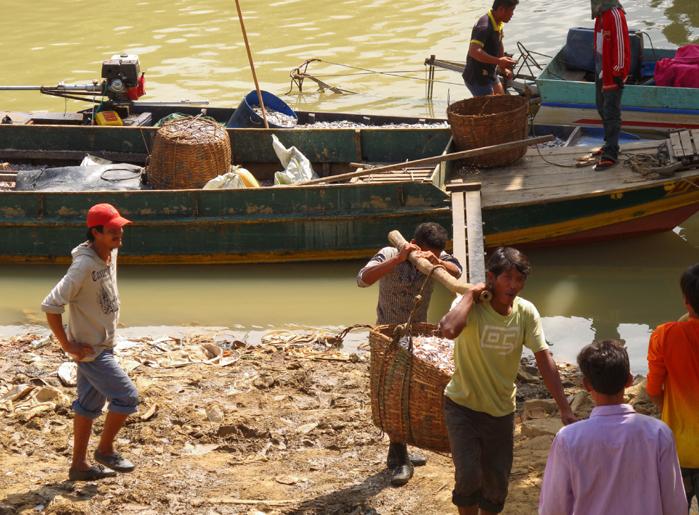 cambodge-battambang-pecheurs