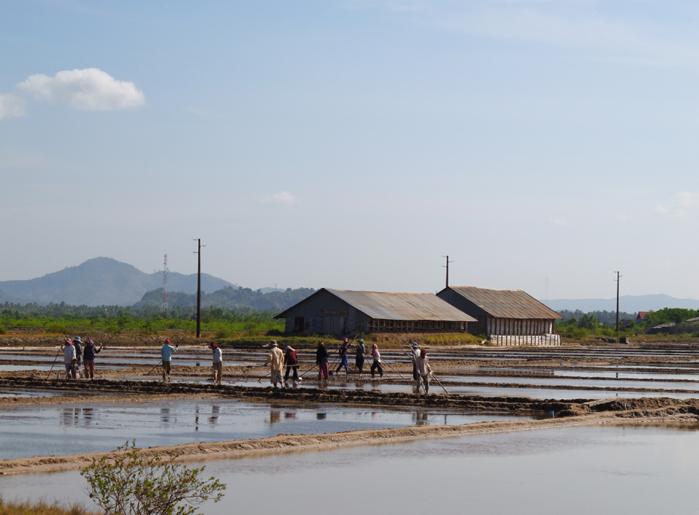 cambodge-kampot-marais-salants