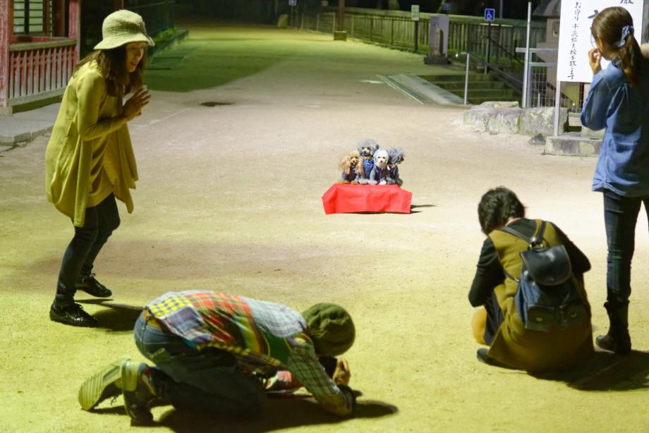 Photographies nocturne Miyajima