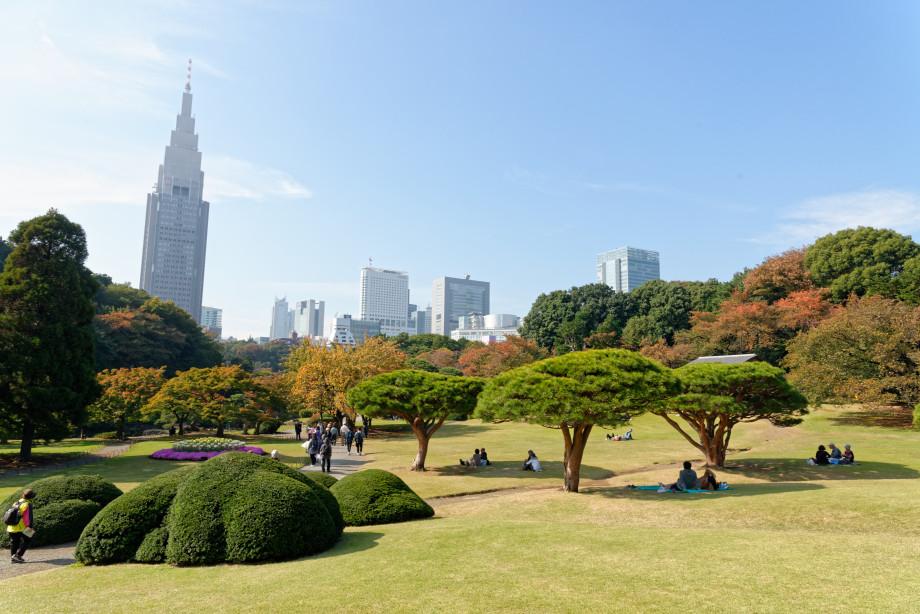 Shinjuku Gosen Park à Tokyo