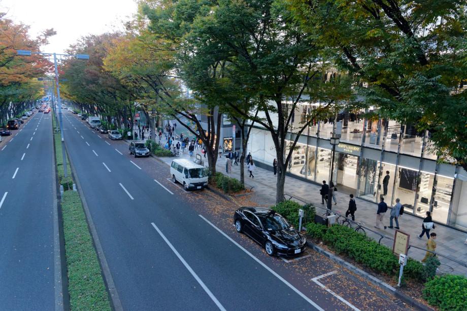 Allée Omotesando à Shibuya