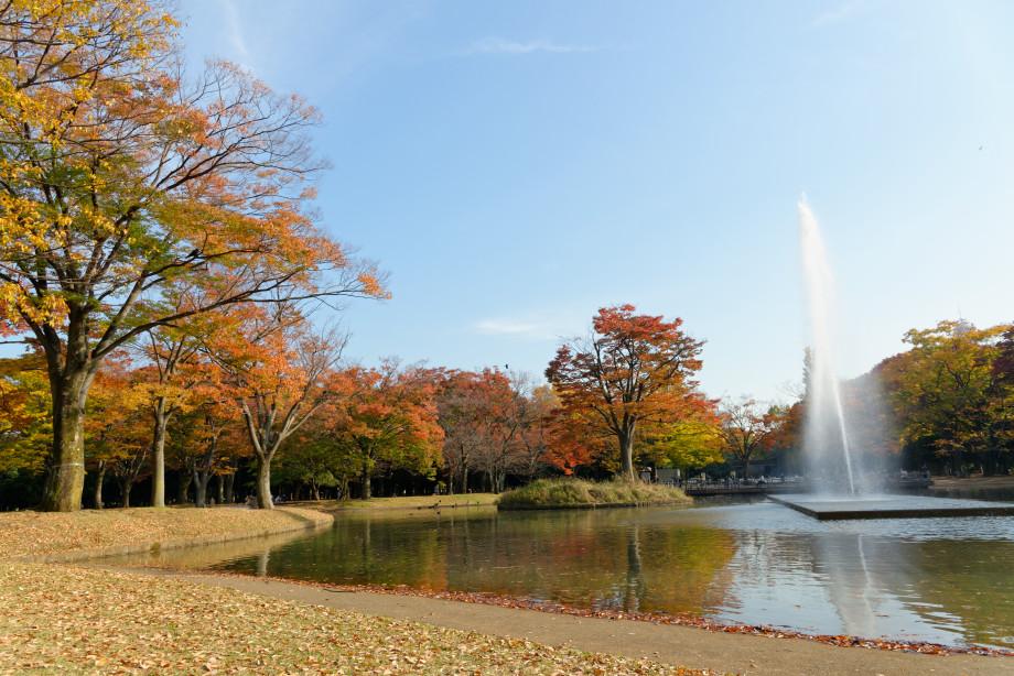 Etand du parc de Yoyogi à Tokyo